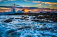 Tìm hiểu thế giới kỳ diệu dưới lòng đại dương qua những bức ảnh 'biết nói'