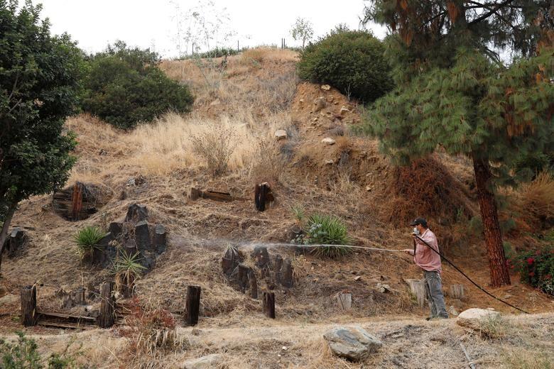 Đang căng mình chống dịch Covid-19, bang California lại phải đối mặt với đám cháy rừng lớn kỷ lục