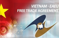 vn eaeu positive transformations after three years of implementing fta