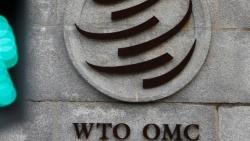Đại sứ Australia tại WTO chỉ trích 'toan tính chính trị' trong chính sách thương mại của Trung Quốc