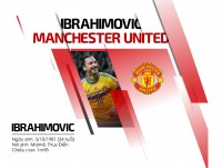 infographic tim hieu ve tan binh lung lay cua man united