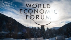 Deputy PM Truong Hoa Binh attends 50th WEF meeting in Davos