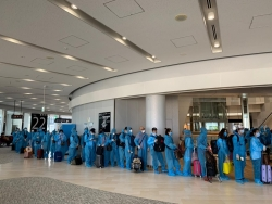 342 more vietnamese repatriated from japan due to covid 19 pandemic