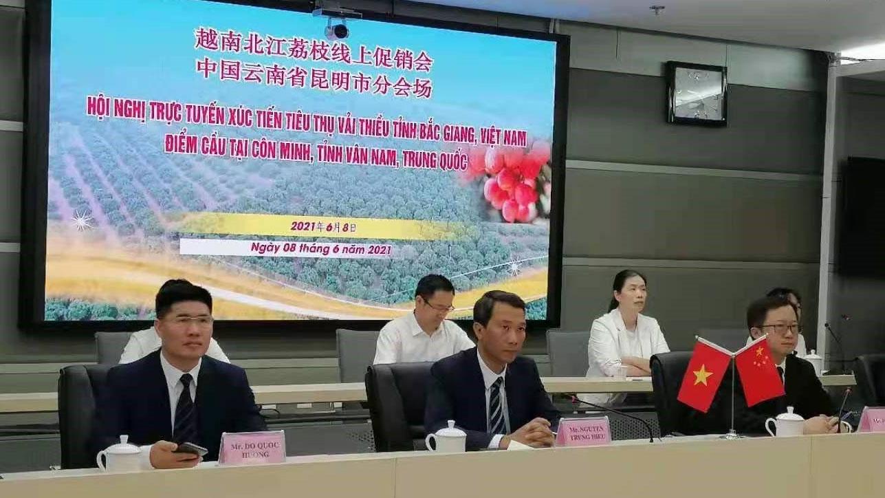 Chung tay xúc tiến tiêu thụ vải thiều Bắc Giang tại thị trường Trung Quốc