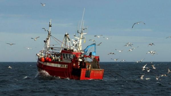 Đàm phán Brexit: Đâu chỉ là chuyện đánh cá?