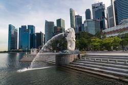 Singapore mở cửa cho thương gia và quan chức nhập cảnh vì 'không lựa chọn nào khác'