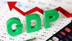 GDP quý II/2021 tăng 6,61% bất chấp diễn biến phức tạp của dịch Covid-19