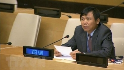 national defence tradition makes vietnams success at un