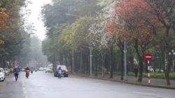 Dự báo thời tiết đêm nay và ngày mai (2-3/3): Đông Bắc Bộ và Thanh Hóa trời rét; Trung Trung Bộ mưa rào rải rác; Đông Nam Bộ có nơi nắng nóng