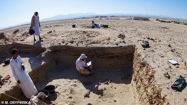 Tìm thấy nghĩa địa thú cưng 2.000 năm tuổi