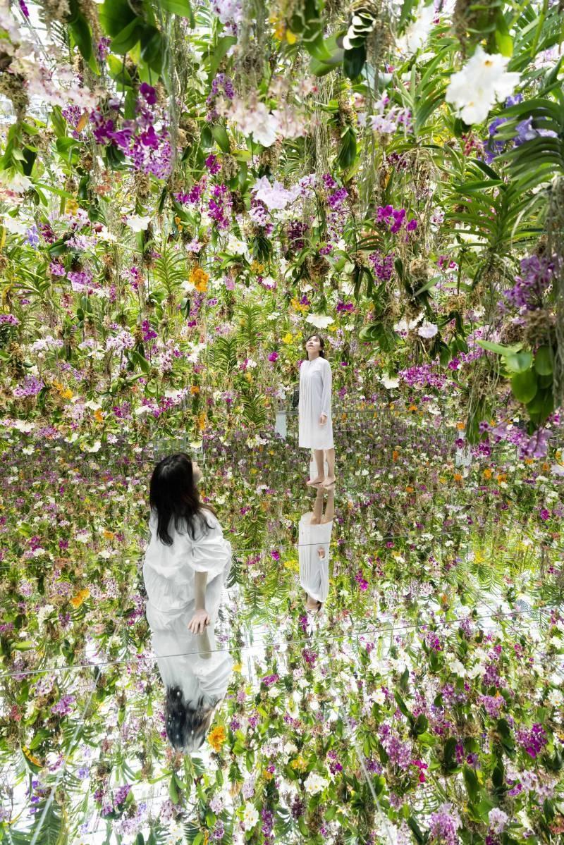 Du khách hoà mình vào không gian bốn bề là hoa. Những khối hoa được treo lơ lửng trên đầu du khách và liên tục di chuyển lên xuống, tạo ra hiệu ứng hình ảnh ấn tượng.