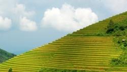 Hãng tin Đức giới thiệu 11 điểm du lịch mê hoặc với 'hành trình xuyên Việt, từ Bắc chí Nam'