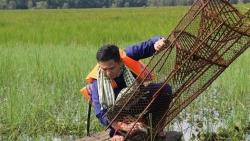 Trải nghiệm làm dân miền Tây 'chính hiệu' tại Vườn quốc gia Tràm Chim