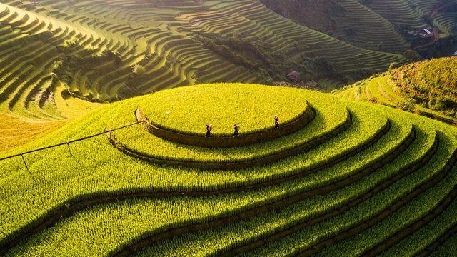 4 khoảnh khắc tuyệt đẹp của Việt Nam tại cuộc thi nhiếp ảnh quốc tế