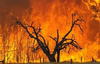 Khí hậu Australia thiết lập kỷ lục nắng nóng mới
