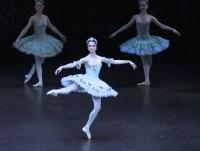 le ngoc van va ngay moi cho ballet viet