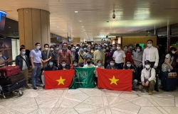Vietnamese Embassies work together to bring home over 270 citizens from Cyprus, Saudi Arabia