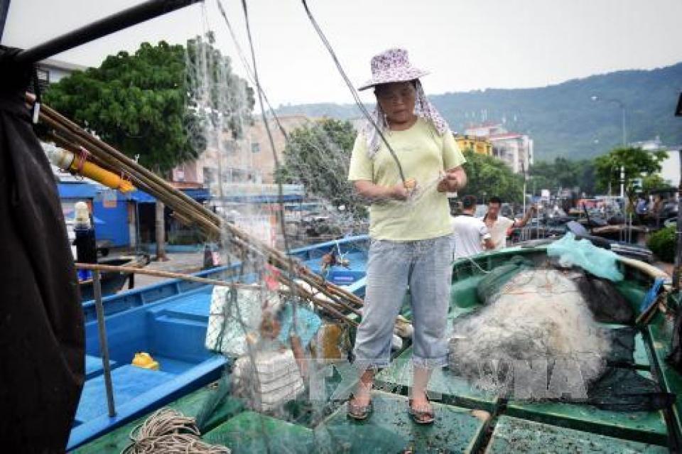 bao nida roi philippines bat dau tan cong trung quoc